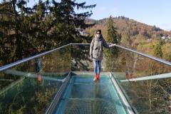 Auf der Glasscheibe, Baumwipfelpfad Bad Harzburg
