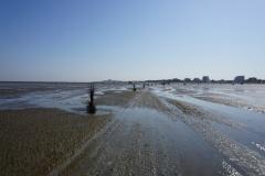 Der markierte Wattwanderweg zur Insel Neuwerk