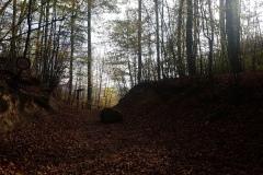 Der Weg zur Einhornhöhle