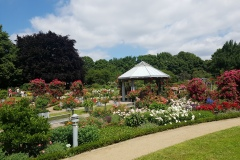 Rosengarten im Planten un Blomen