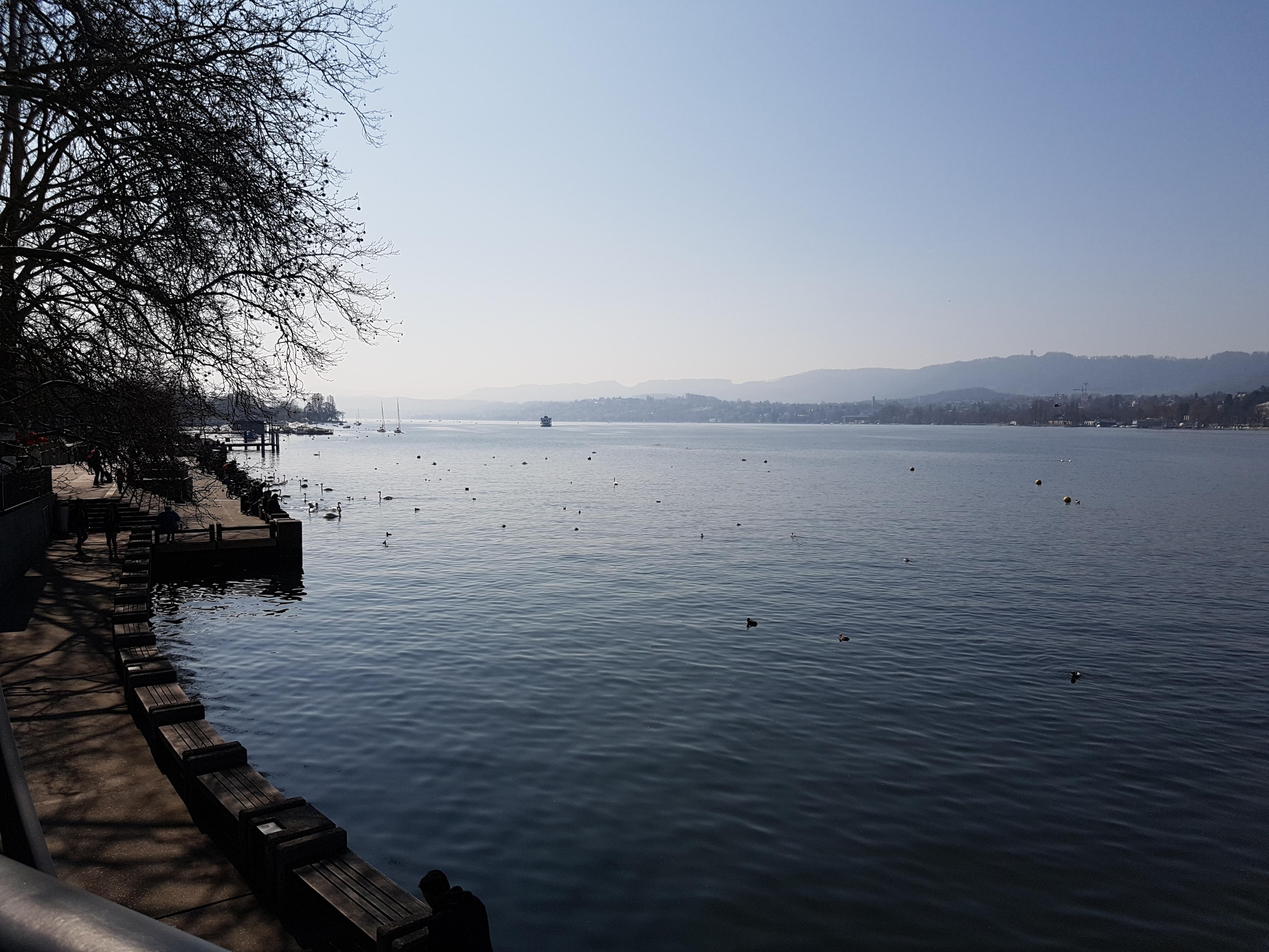 Ein Spaziergang durch Zürich