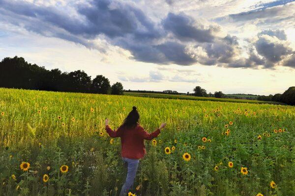 Mecklenburg Vorpommern – Urlaub rund um Brunow